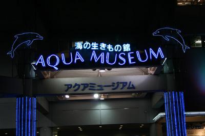 アクアミュージアム夜景
